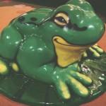 frog apparatus